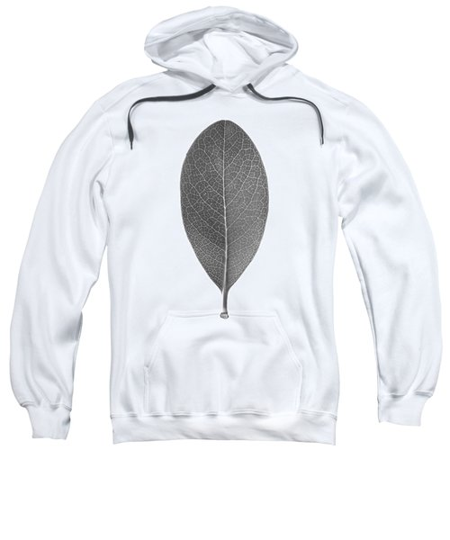 Indian Hawthorn Leaf Sweatshirt