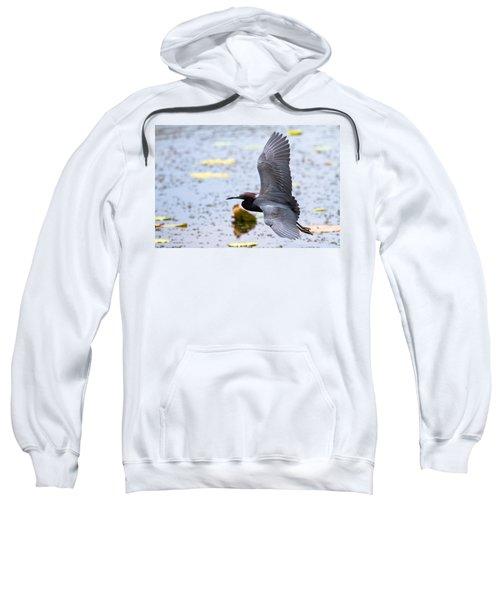 Little Blue Heron Sweatshirt