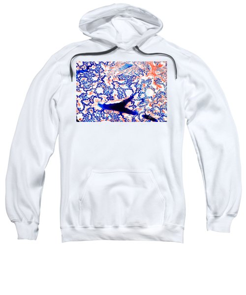 Lung Thick Section Sweatshirt