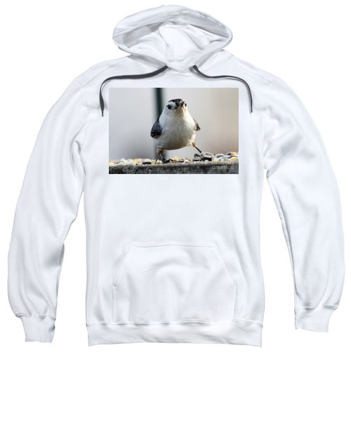 Nuthatch Sweatshirt