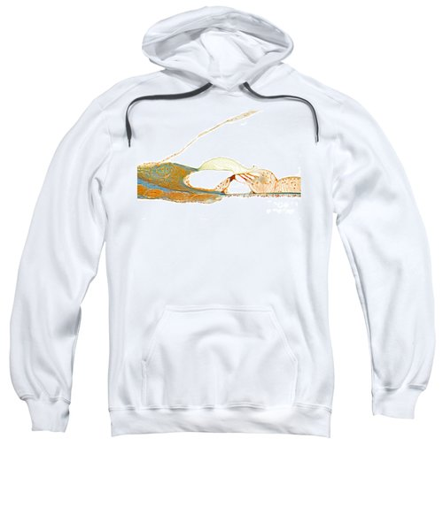 Organ Of Corti, Human Sweatshirt