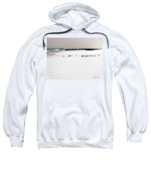 Polar Bird Club Sweatshirt