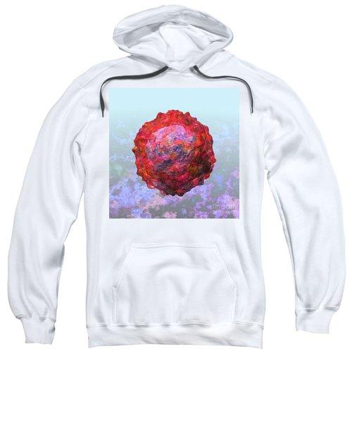 Polio Virus Particle Or Virion Poliovirus 2 Sweatshirt