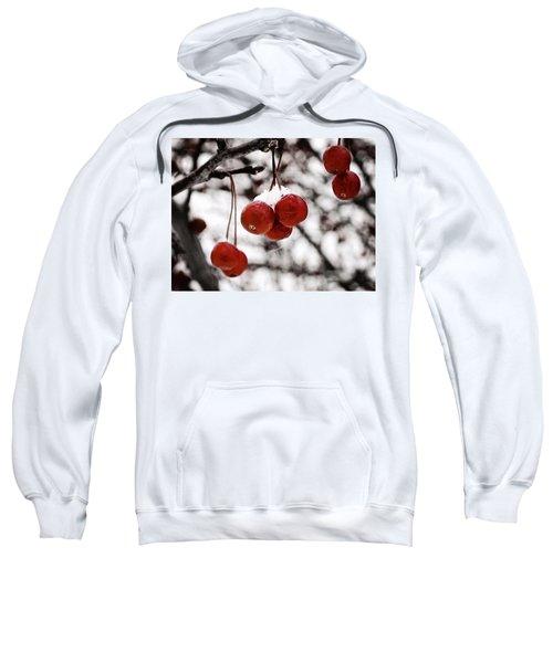 Red Winter Berries Sweatshirt