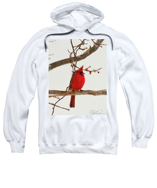 Righteous Cardinal Sweatshirt