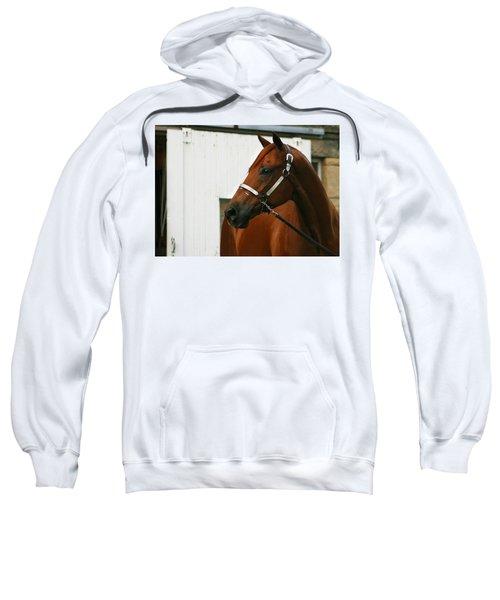 Stud Sweatshirt