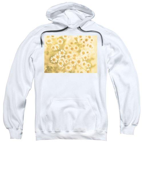 Vanilla Kisses Sweatshirt