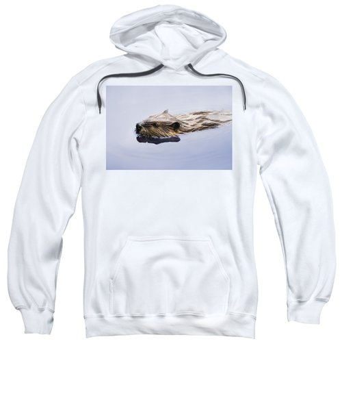View Of Beaver, Chaudiere-appalaches Sweatshirt by Yves Marcoux