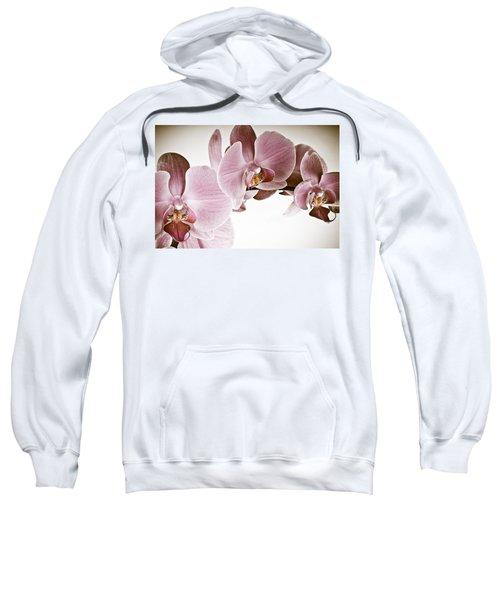 Vintage Orchid Sweatshirt