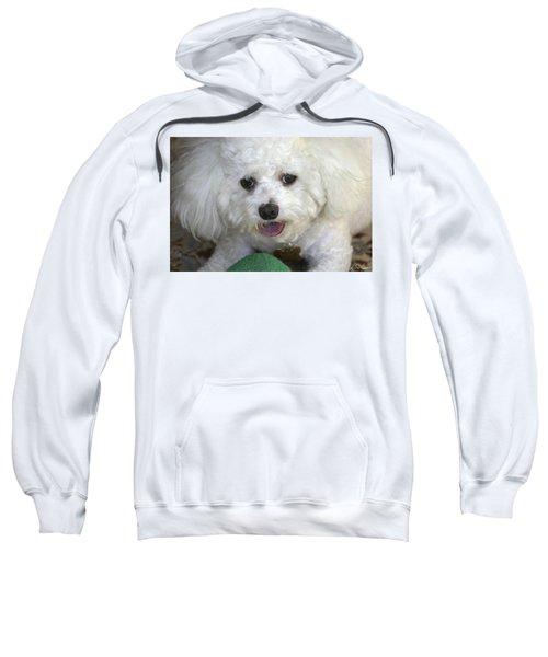 Wanna Play Ball? Sweatshirt