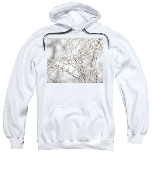 Winter Sight Sweatshirt