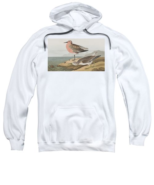 Red-breasted Sandpiper  Sweatshirt by John James Audubon