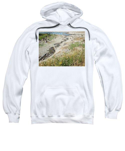 Alder Lake Stumps Sweatshirt