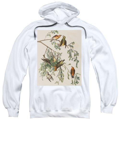 American Crossbill Sweatshirt