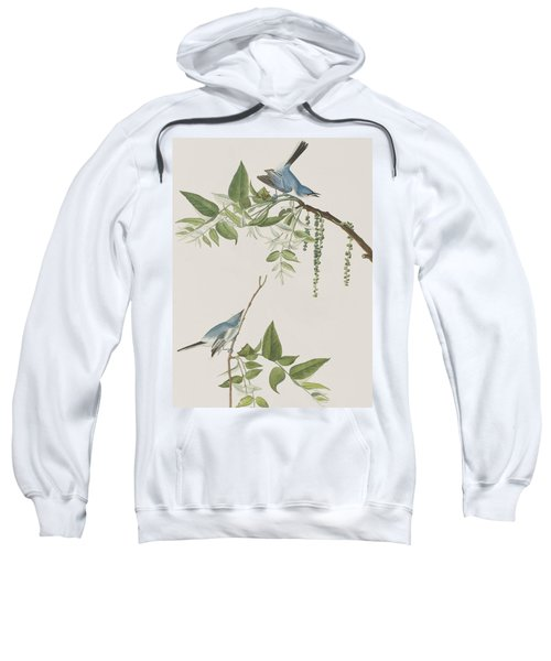 Blue Grey Flycatcher Sweatshirt by John James Audubon
