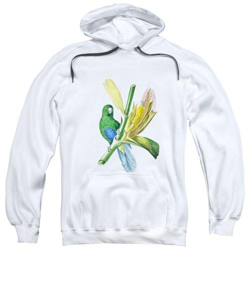 Brazilian Parrot Sweatshirt by Philip Ralley