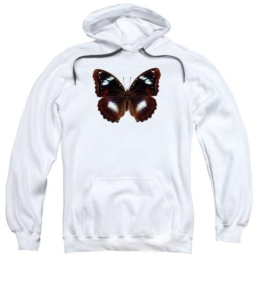 Butterfly Species Hypolimnas Bolina  Sweatshirt