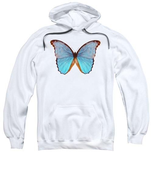 Butterfly Species Morpho Godarti Assarpai Sweatshirt