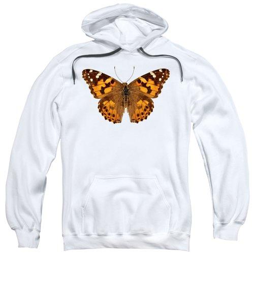 Butterfly Species Vanessa Cardui  Sweatshirt