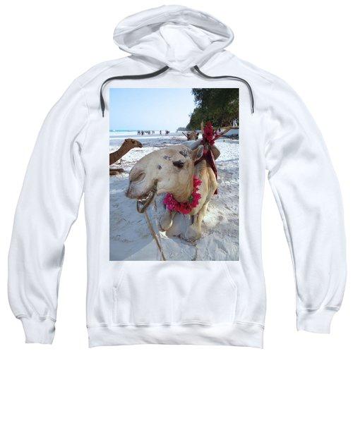Camel On Beach Kenya Wedding3 Sweatshirt by Exploramum Exploramum