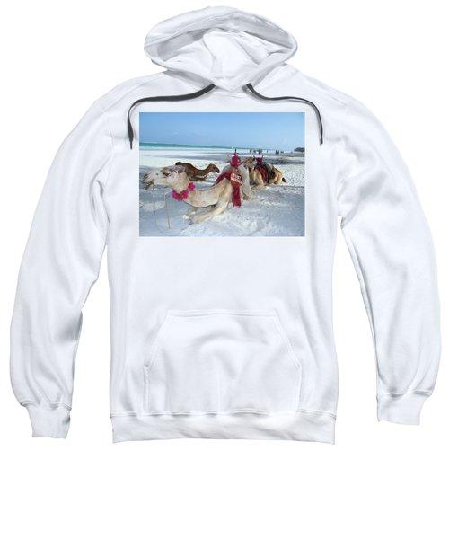 Camel On Beach Kenya Wedding4 Sweatshirt