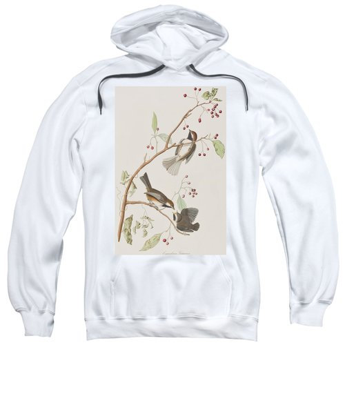 Canadian Titmouse Sweatshirt