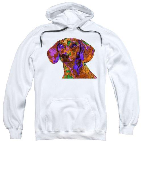 Chloe. Pet Series Sweatshirt