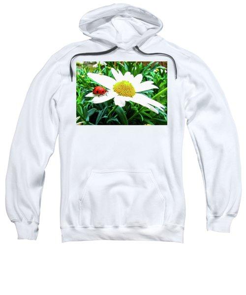 Daisy Flower And Ladybug Sweatshirt