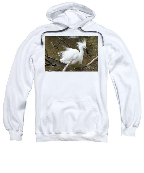 Egret Bath Sweatshirt