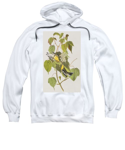 Hemlock Warbler Sweatshirt by John James Audubon