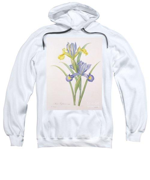 Iris Xiphium Sweatshirt