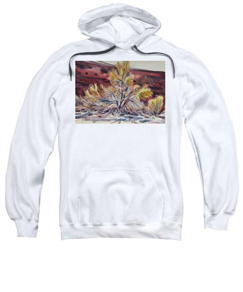 Ironwood Sweatshirt by Donald Maier