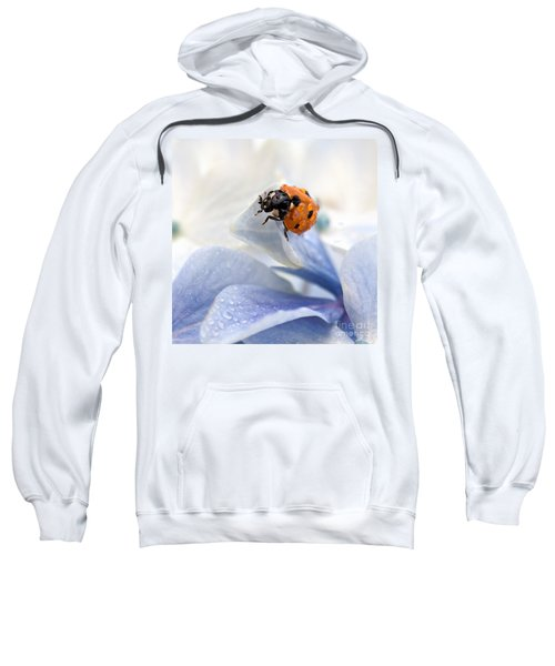 Ladybug Sweatshirt