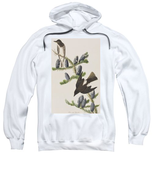 Olive Sided Flycatcher Sweatshirt by John James Audubon