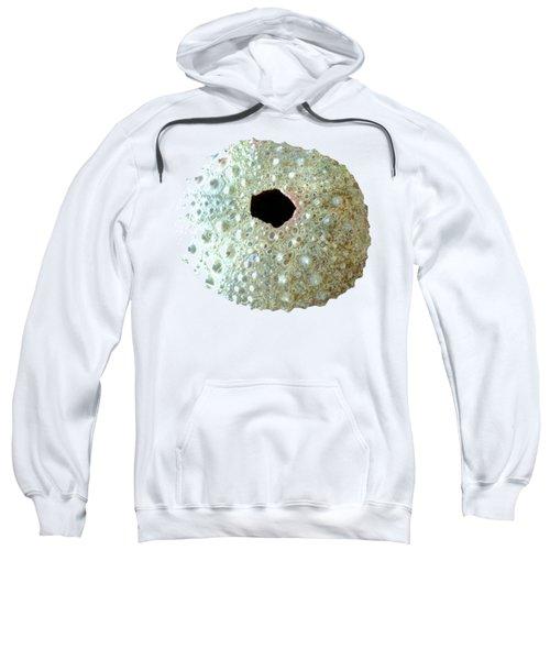 Sea Urchin Sweatshirt