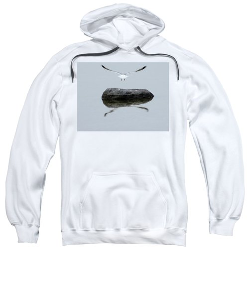 Seagull In Flight Sweatshirt