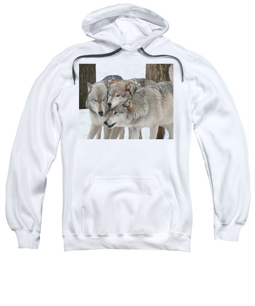 Three Wolves Are A Crowd Sweatshirt