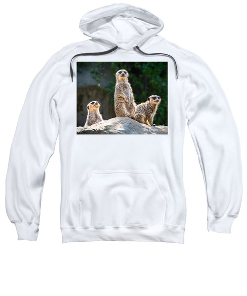 Three's Company Sweatshirt by Jamie Pham