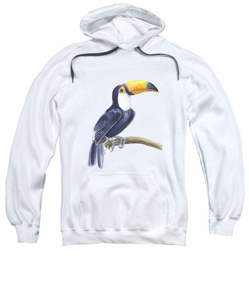 Toucan, Tropical Bird Sweatshirt