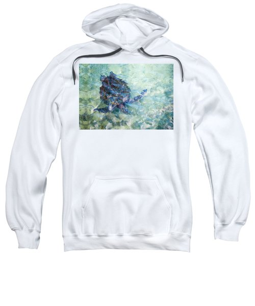 Watercolor Turtle Sweatshirt