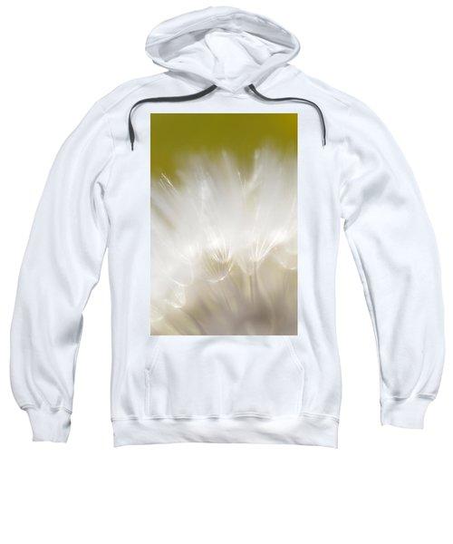 White Blossom 1 Sweatshirt