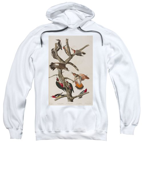 Woodpeckers Sweatshirt