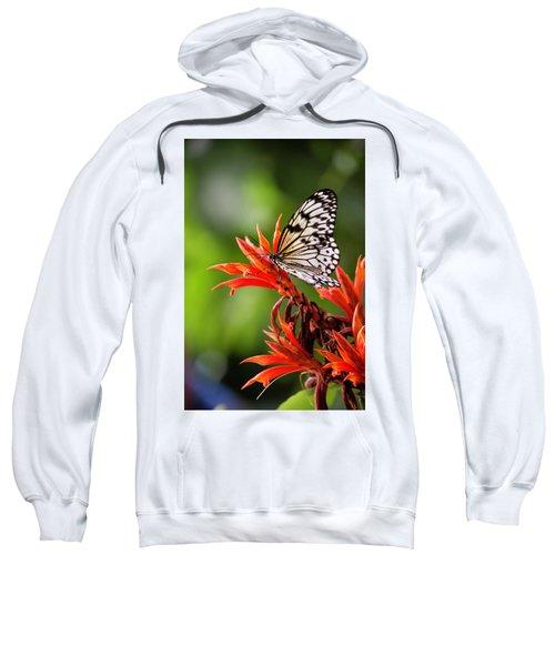 1514 Sweatshirt