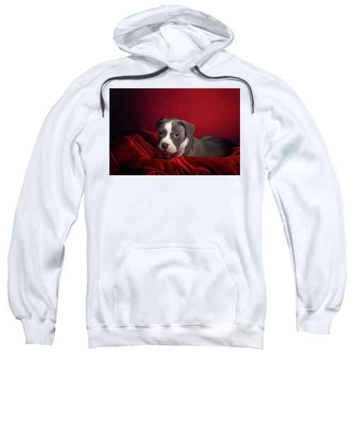 American Pitbull Puppy Sweatshirt