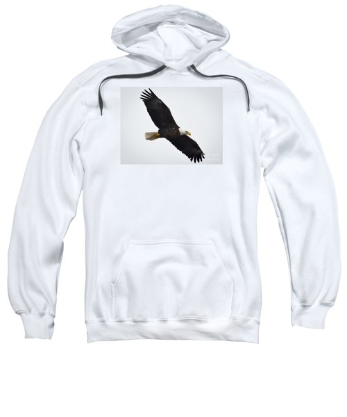 Sweatshirt featuring the photograph Bald Eagle by Ricky L Jones