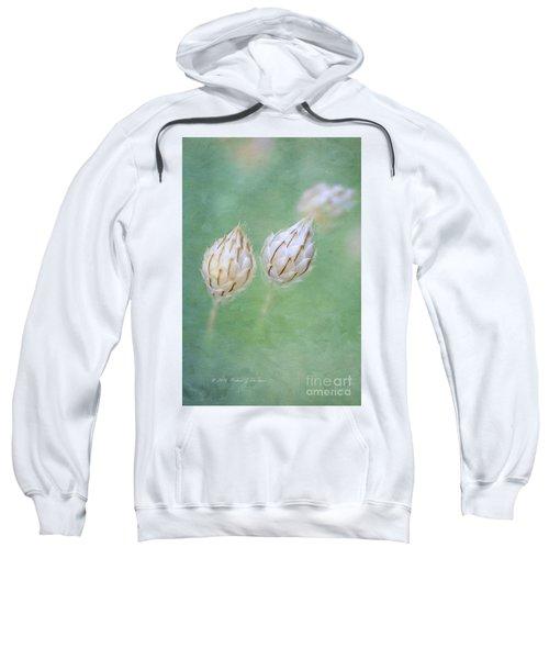 Cupid's Dart Sweatshirt