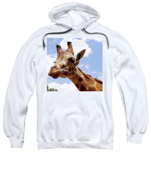 Giraffe Getting Personal 6 Sweatshirt