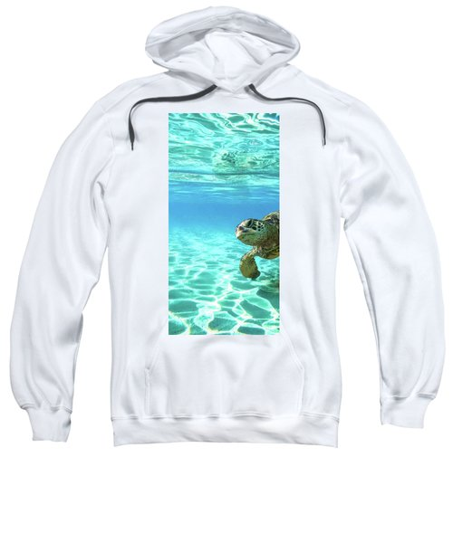 Turtle Tryptic Sweatshirt