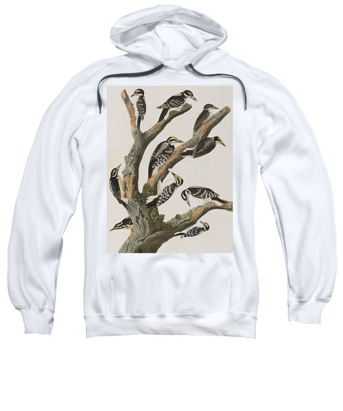 Woodpeckers Sweatshirt by John James Audubon