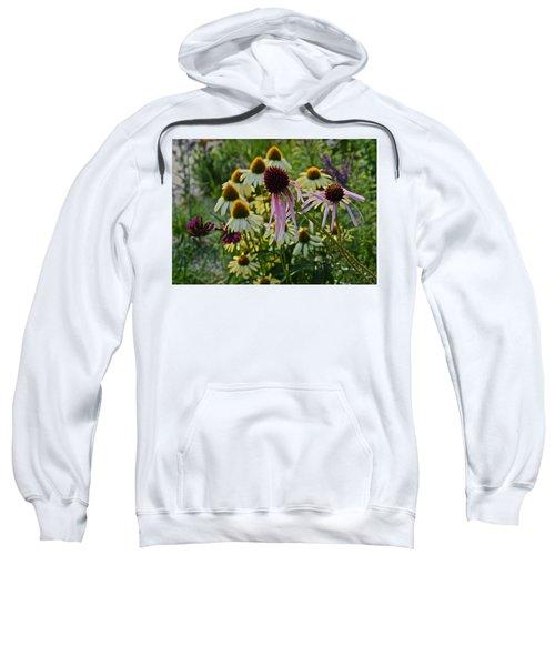 2015 Summer At The Garden Coneflowers Sweatshirt